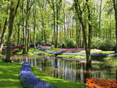Belgia i Holandia – Benelux